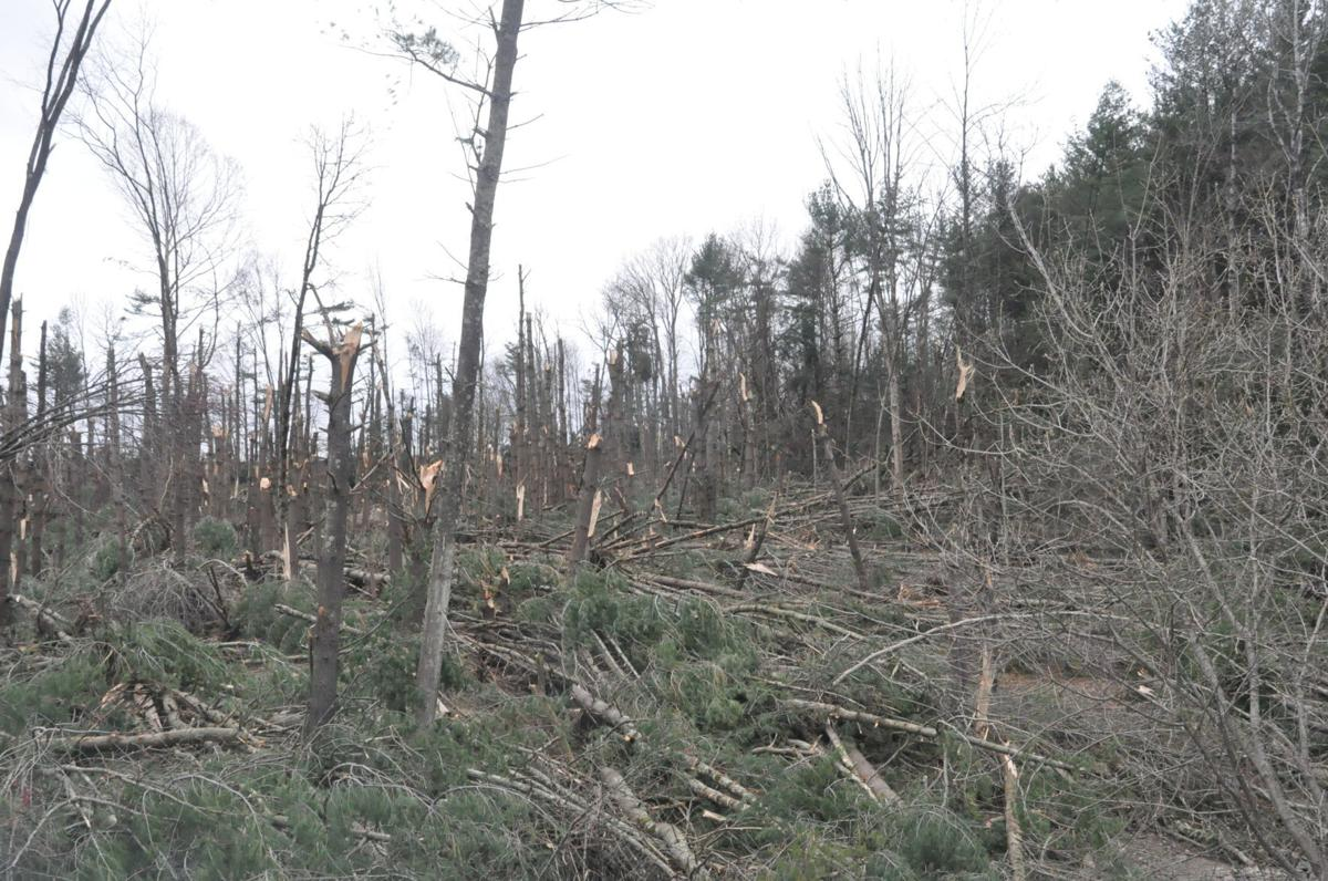 Winds push path of destruction through Franklin Township property
