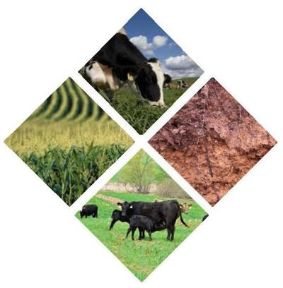 Conservation Corner: The soil health climax