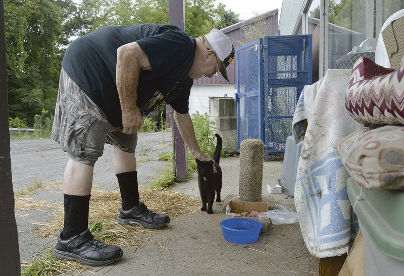 Vietnam vet, 'meow man' keeps eye on local strays