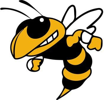 Oneonta Yellowjackets
