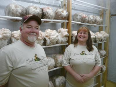 New farmers offer high-end mushrooms