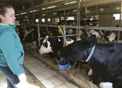 Walmart dairy shift looms over local farms