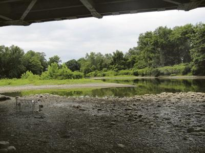 Debris, silt under bridge spur talk of cleanup