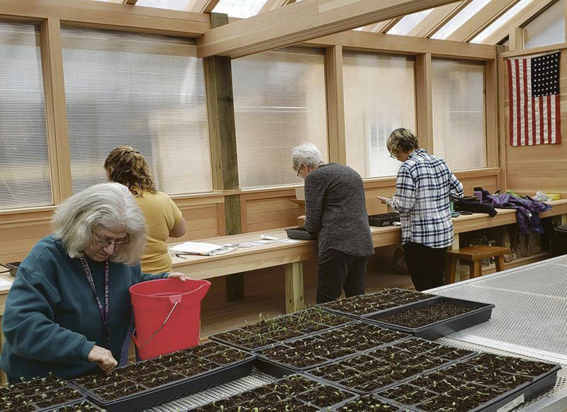 Master Gardeners share love of growing things