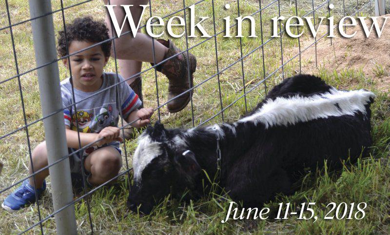 Week in Review: June 11-15, 2018