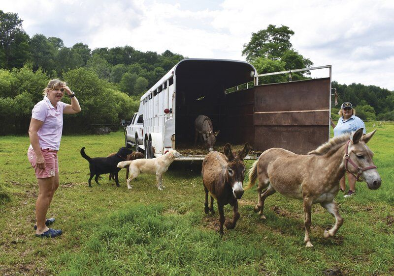 Woman opens animal rescue in Morris