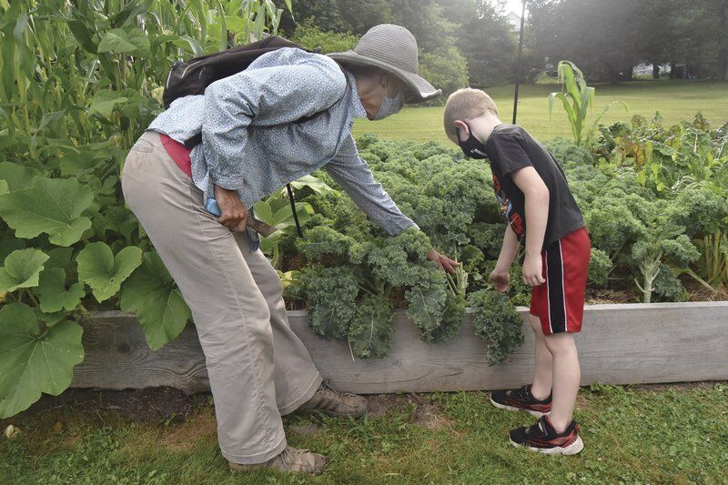 School garden's roots extend into Hancock life