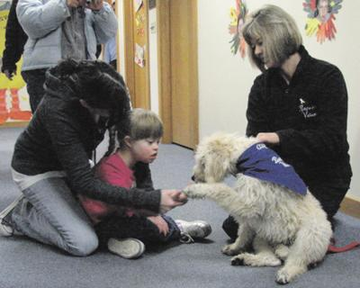 Staff: Dog fitting in well at Pathfinder | Local News | thedailystar com