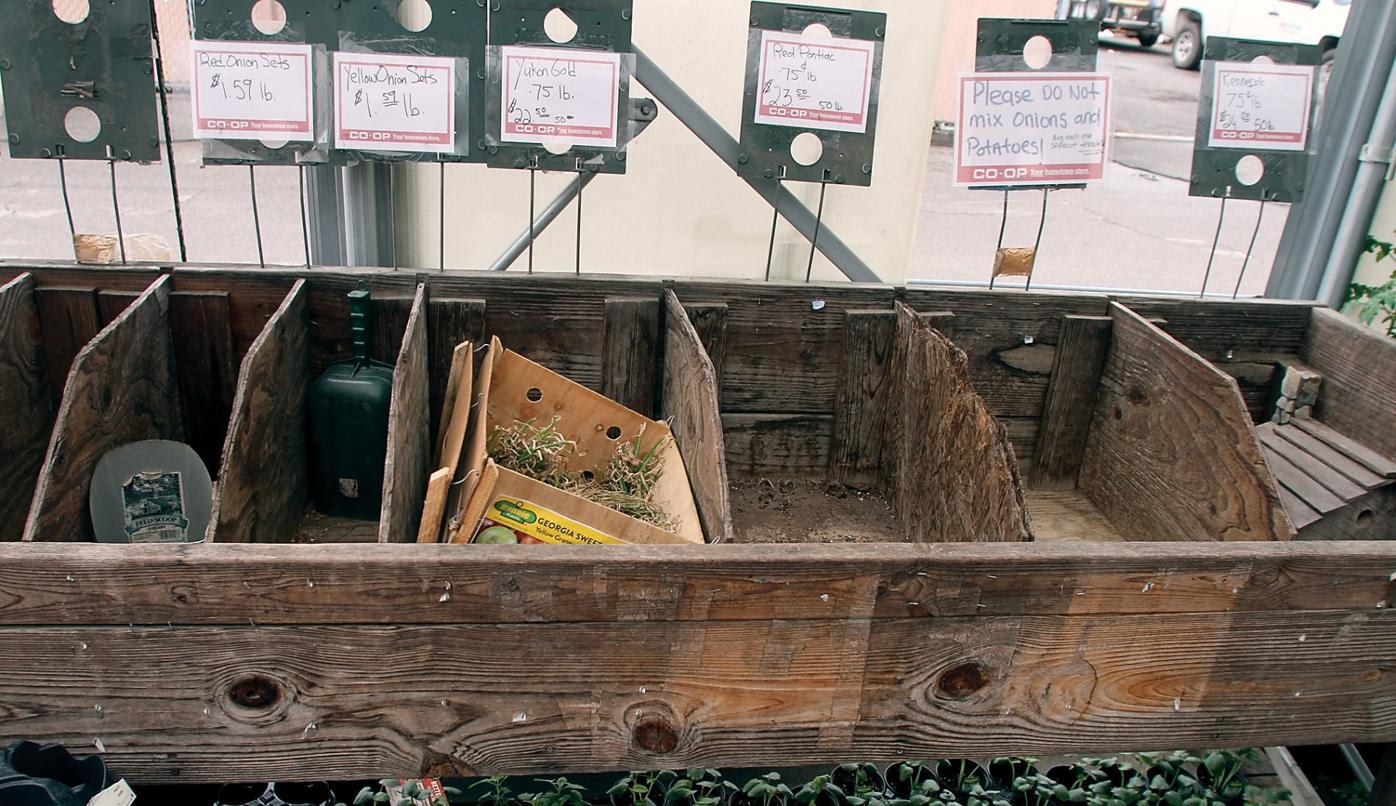 Onion and potato bins are empty at the AgCentral Cooperative