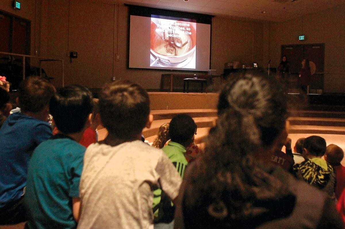 Alcoa Elementary, High School students take virtual field trips ...