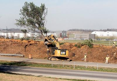 Trees removed along Alcoa Highway