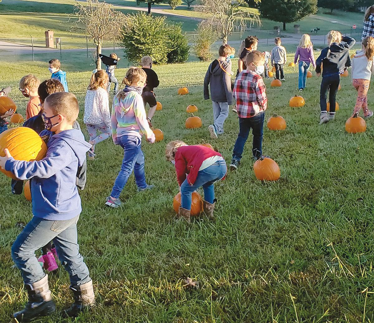 Pumpkin patch at Middlesettlements Elementary School