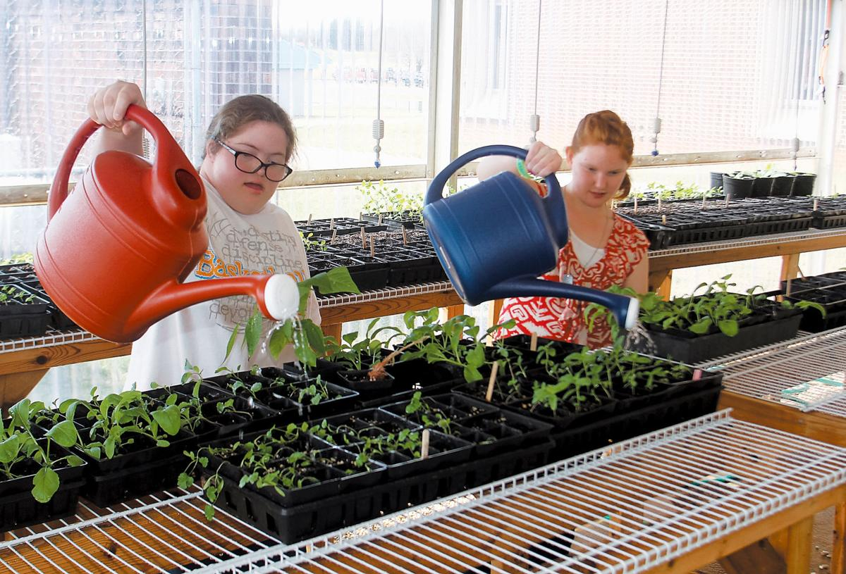 Sierra Morris (left) and Tiffany Tucker waters plants in the greenhouse special needs students are helping to rehab