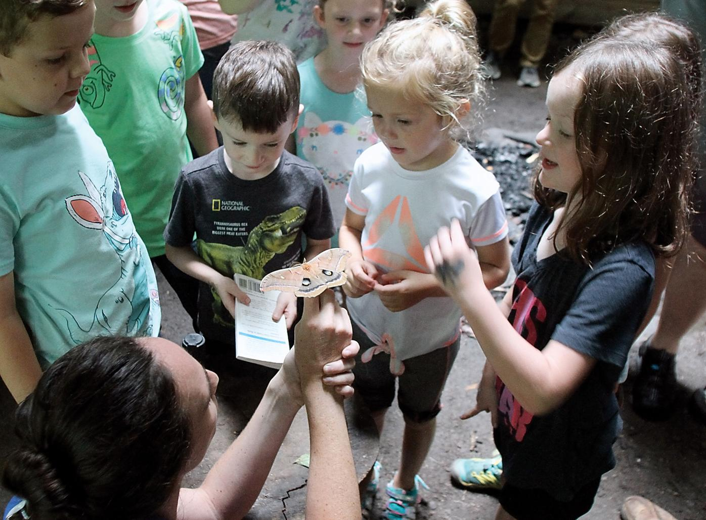 Great Smoky Mountains Institute at Tremont's Erin Canter shows children a polyphemus moth