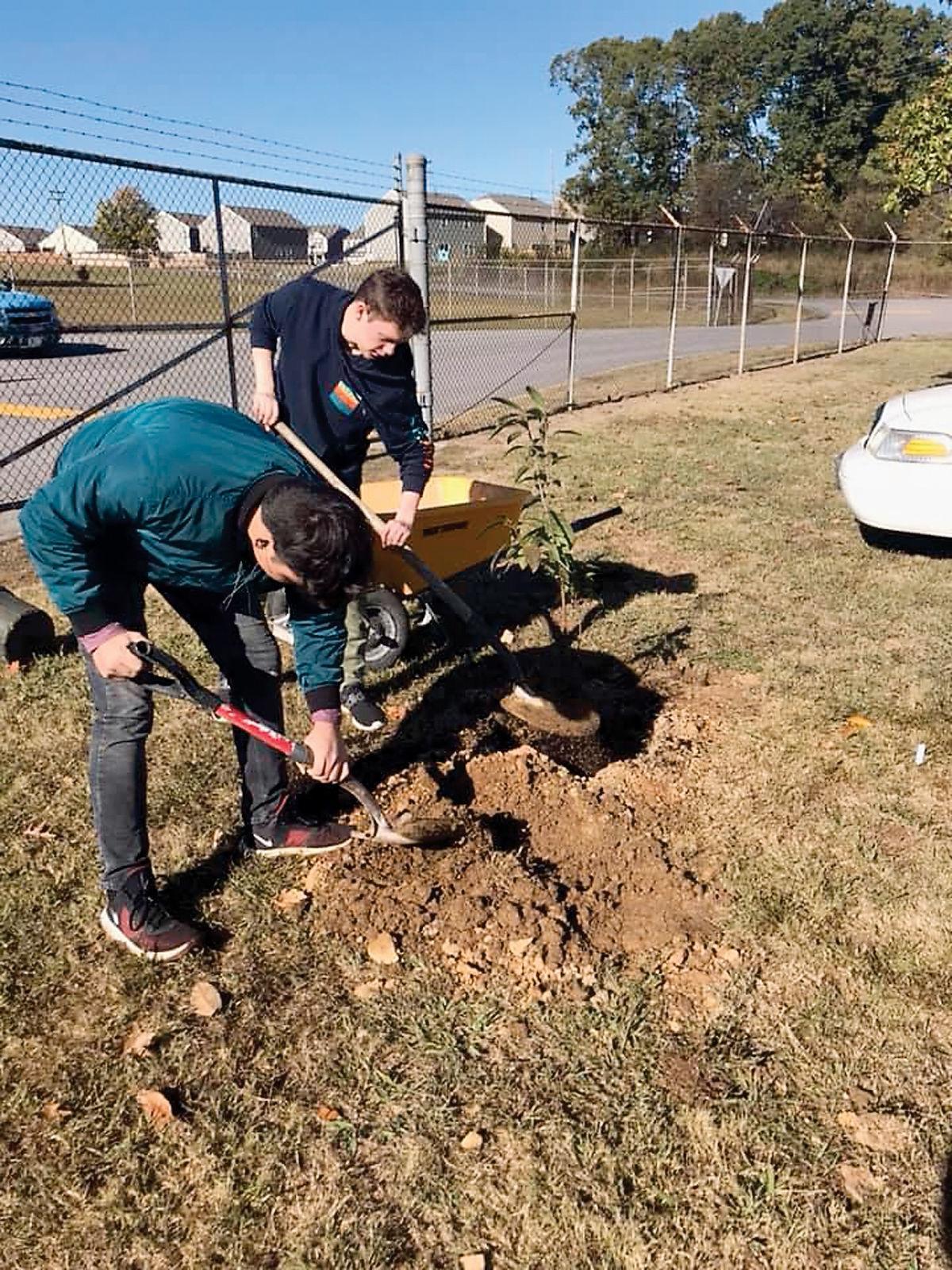 Planting trees at William Blount