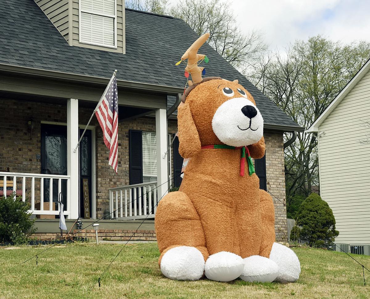 Spot the stuffed animals around town