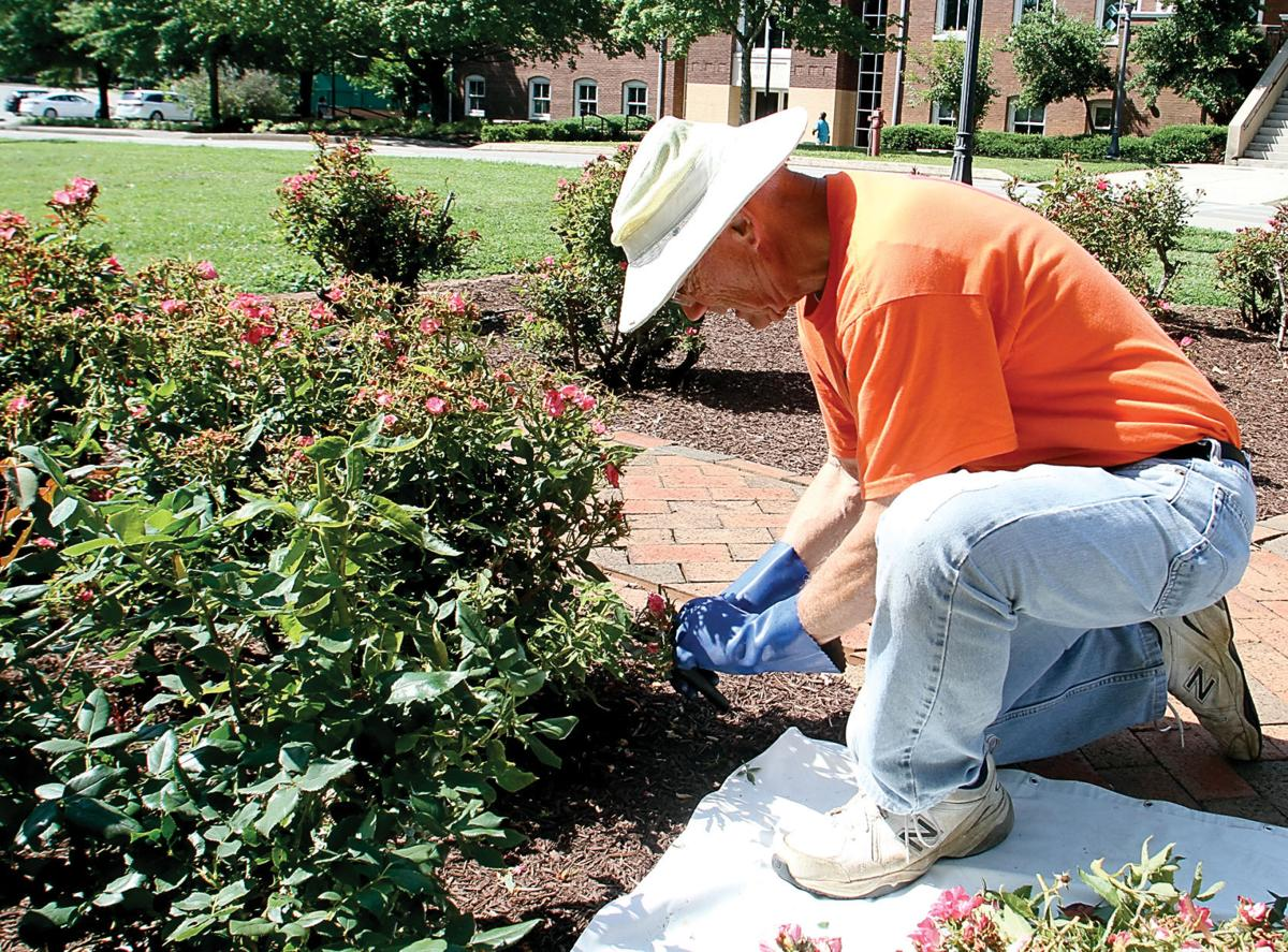 Volunteers Spruce Up Maryville College Campus During Kin