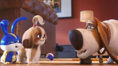 """The Secret Life of Pets 2"""