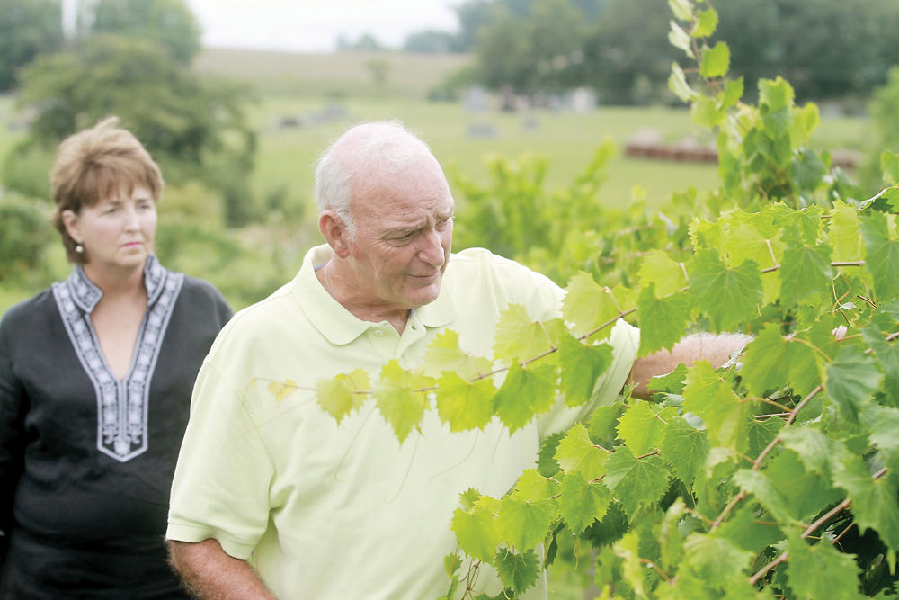 Mark and Beverly Griffith of Blue Goose Farm and Vineyard