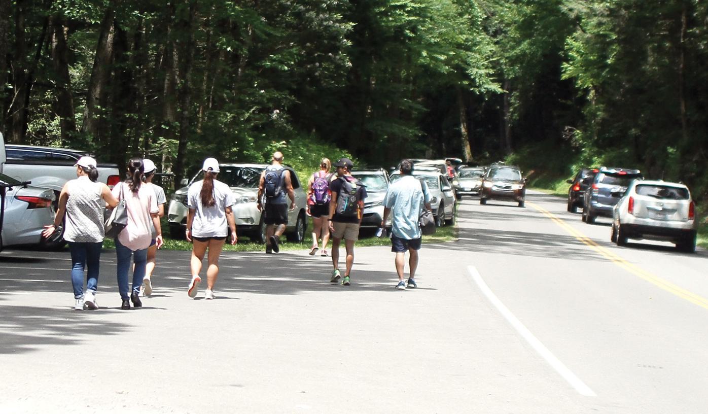 Visitors walk down Laurel Creek Road to Cades Cove (TT)