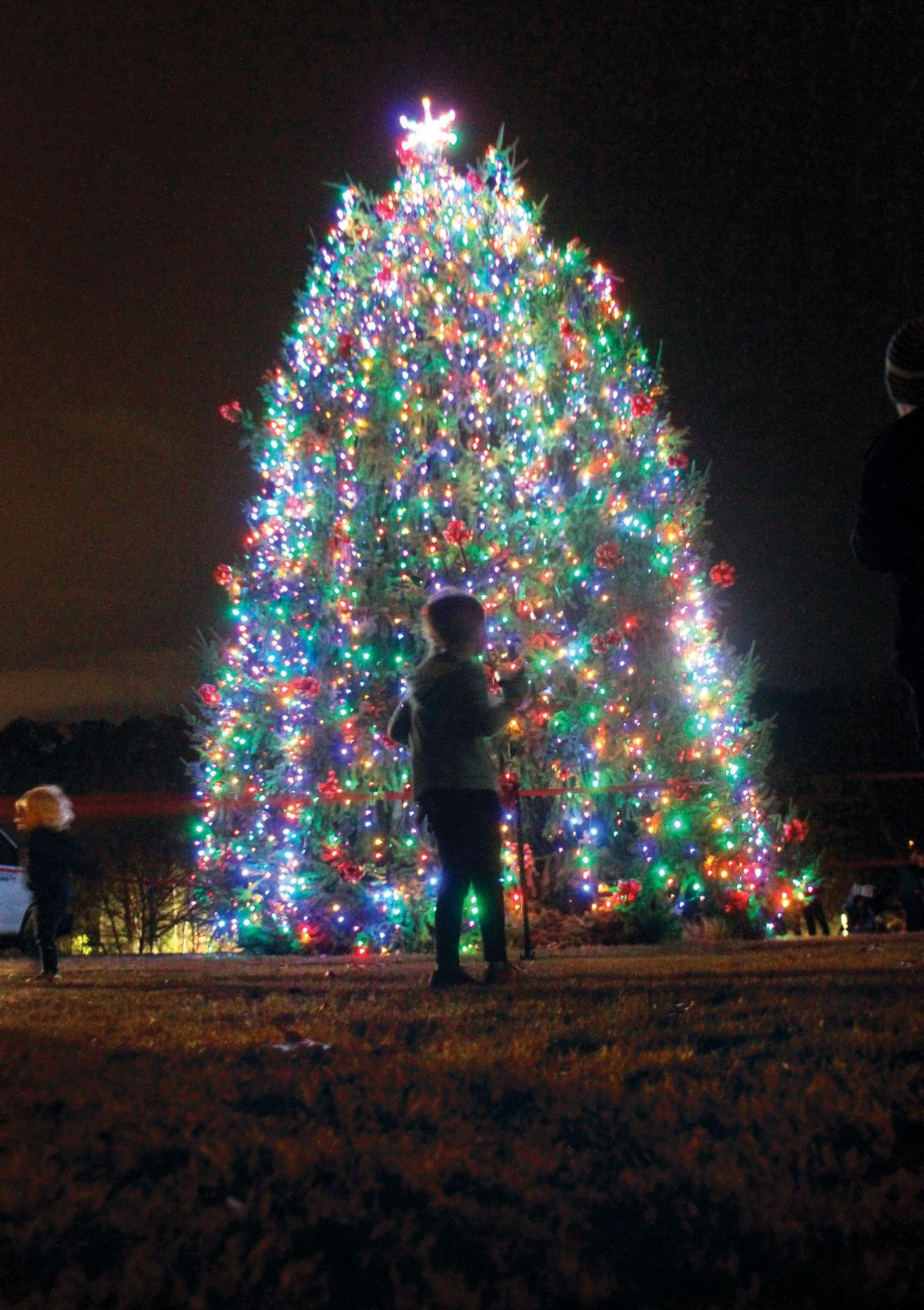 HOLIDAY ACTIVITIES GUIDE: Area gears up for a post-turkey flurry of ...