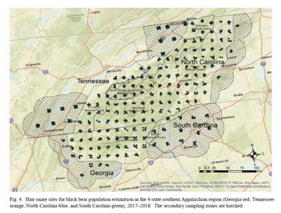 Southern Appalachian Cooperative Bear Study area