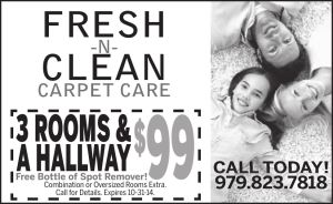 Fresh N Clean Carpet Care
