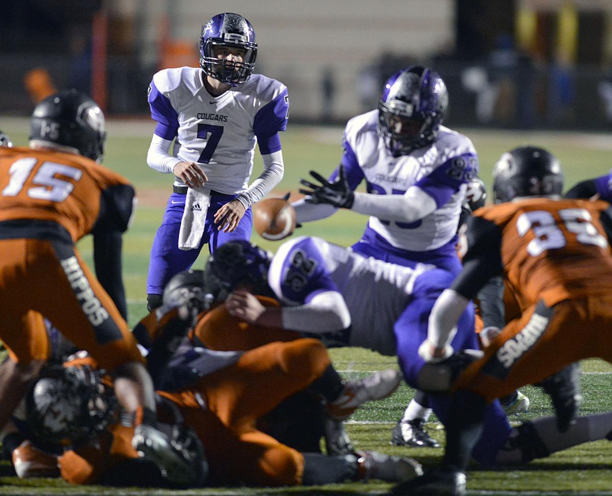 Cougars drop playoff win at Hutto