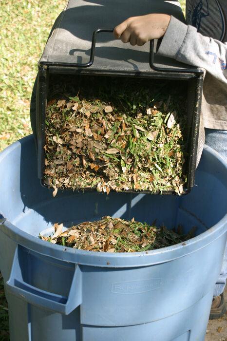 RICHTER: Mulching leaves
