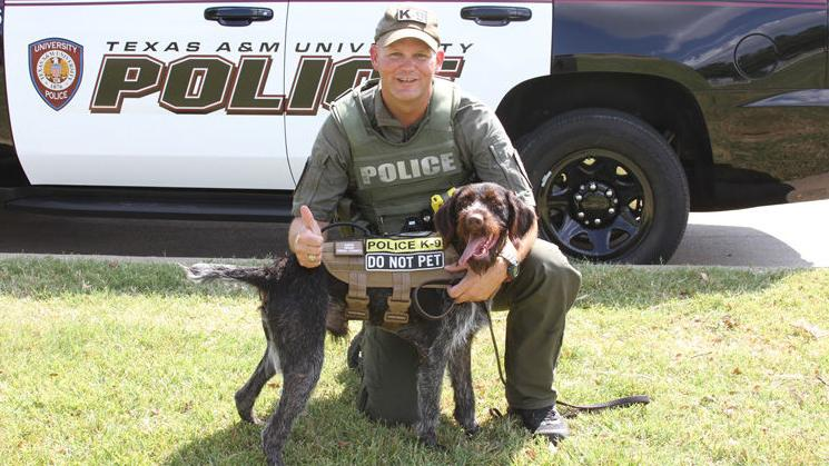 New K-9 officers debut for Brazos Valley law enforcement agencies