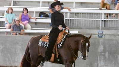 Ashley Davidson Equestrian