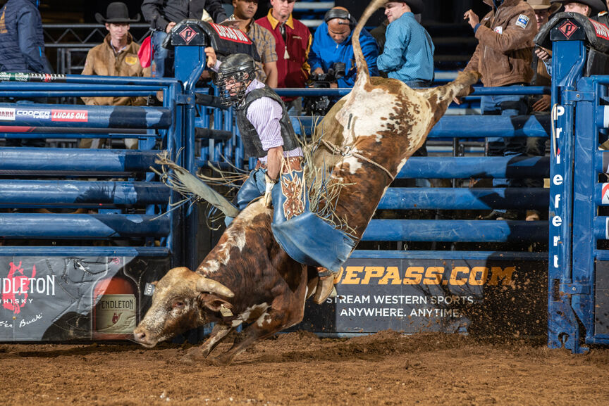 Former bull rider finds second rodeo career as trainer