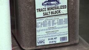 LLP: Mineral imbalances