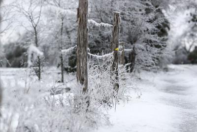 20210218 Winter Weather CS 17.jpg