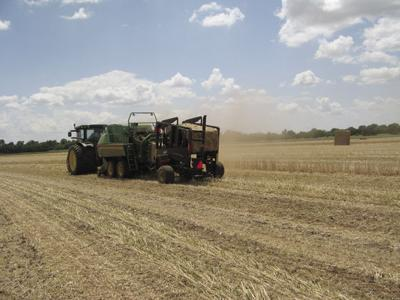 Making bale: What is the value of a bale of hay?
