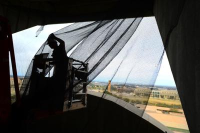 Bats, be gone: Team trying to rid Kyle Field of flying mammals