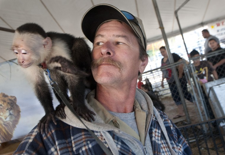 Traveling exhibit of exotic animals stops in Bryan