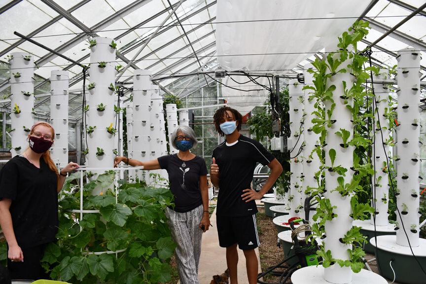 TUFU greenhouse