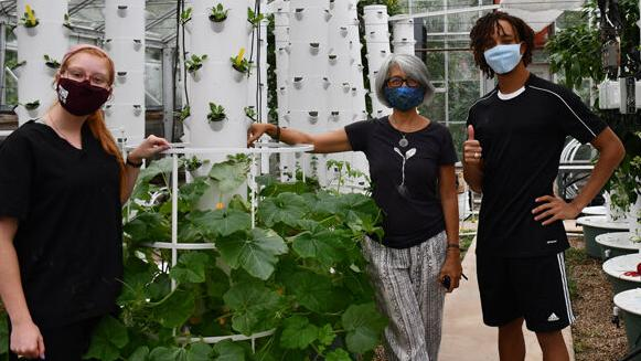 Texas A&M Urban Farm United greenhouse utilizes aeroponic towers to expand community offerings