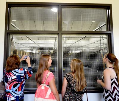 Texas A&M's Avian Health Complex already hard at work treating exotic birds