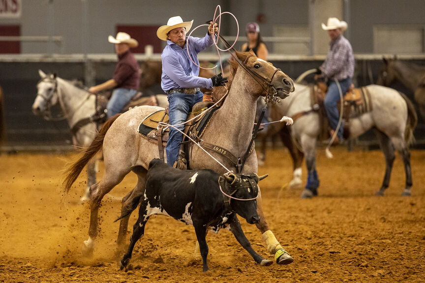 All-Aggie Rodeo