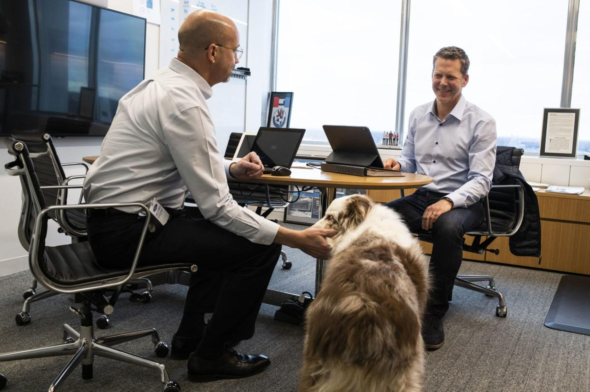 Ford is letting employees bring dogs to work in a bid to lure tech talent
