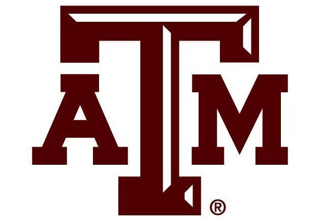Texas A&M announces newest Hagler Fellows | Lo...