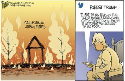bruce plante cartoon trump and california fires cartoons