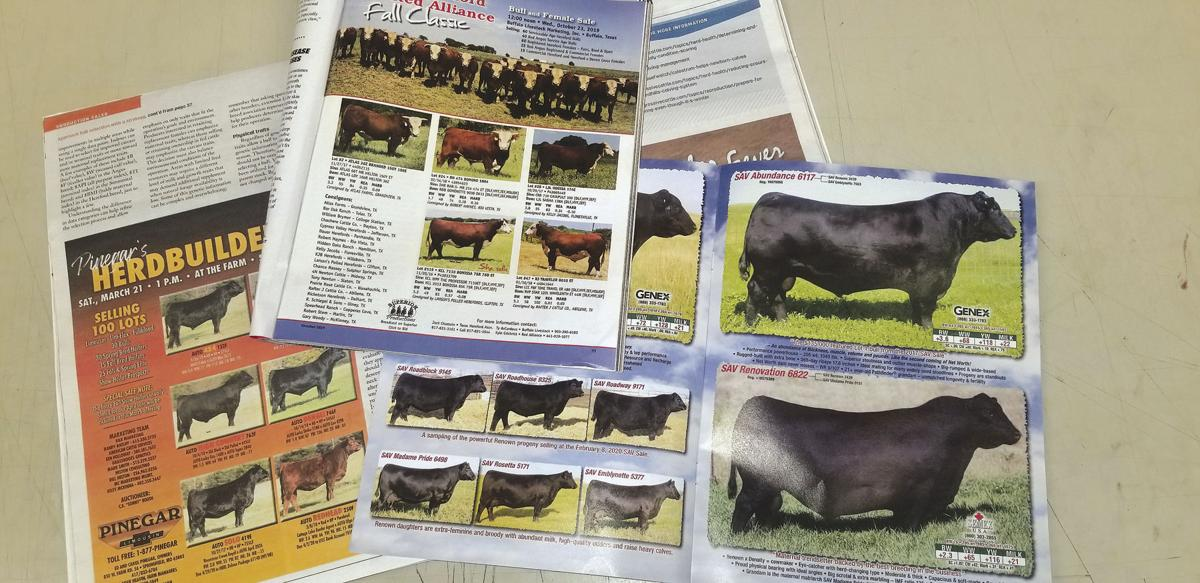 The full tool box: How breed associations contribute to the cow-calf sector