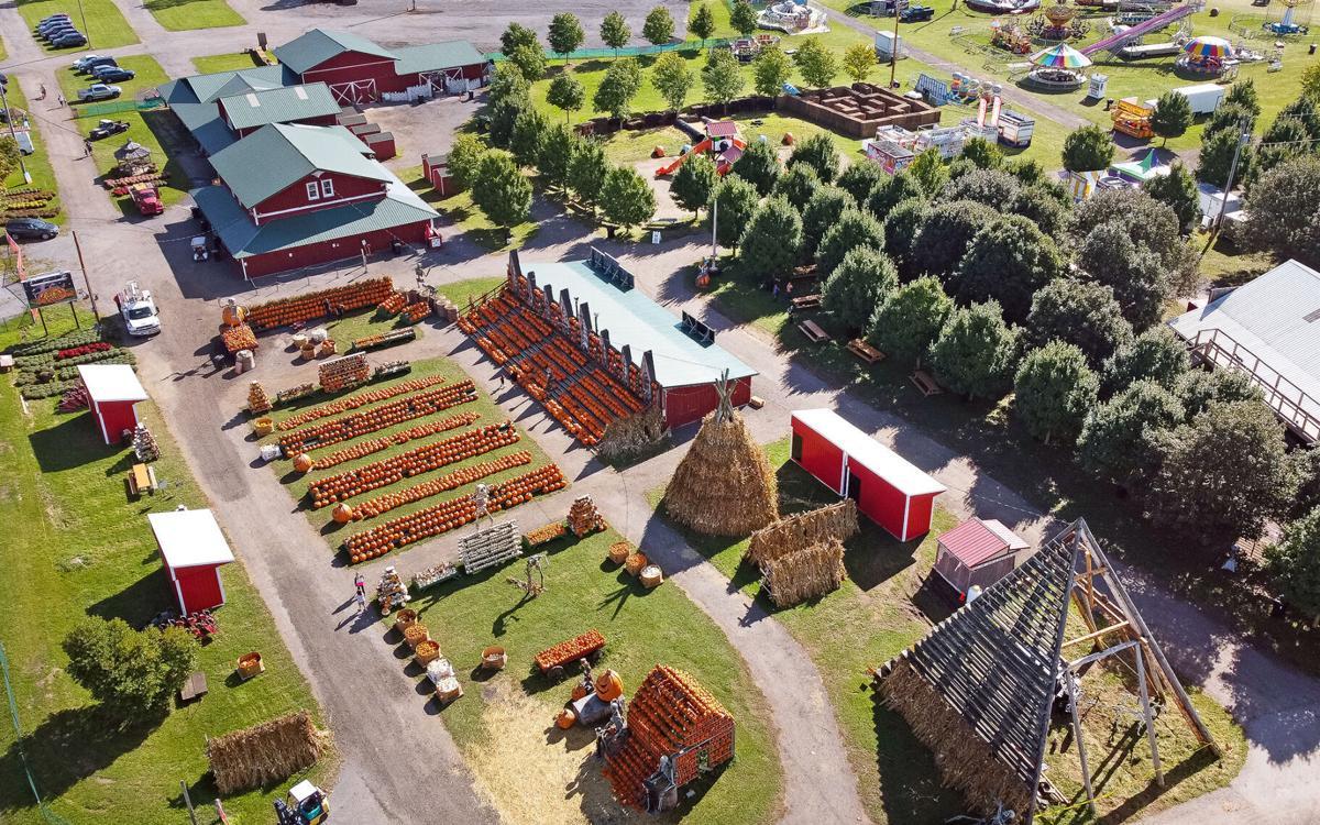 The Great Pumpkin Farm aerial
