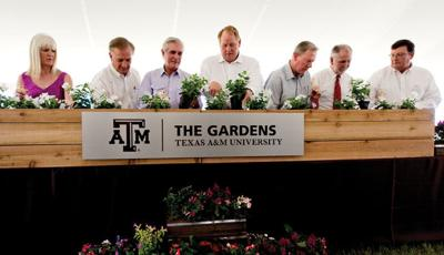 The Leach Teaching Gardens