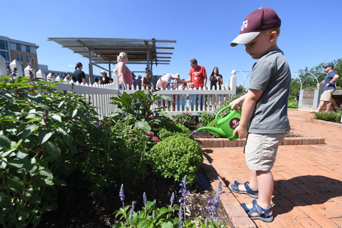 Leach Teaching Gardens