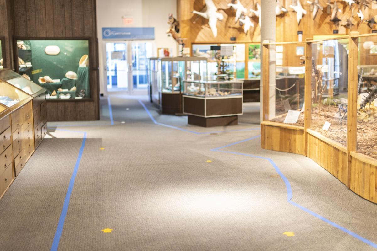 Brazosport Museum
