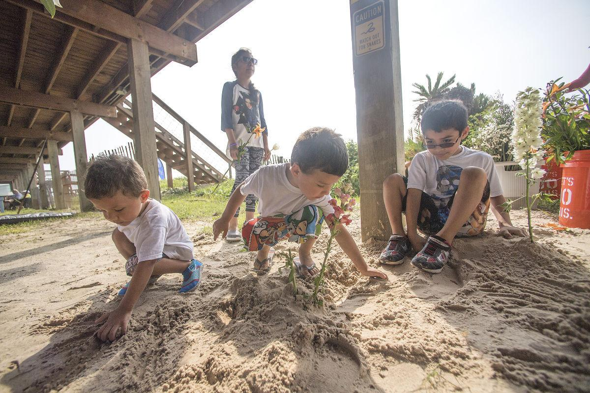 Weather, bacteria scare keeps beach tourism flat | News | thefacts com
